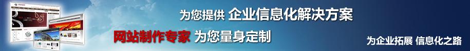 秦皇岛专业网站定制开发