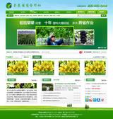 昌农葡萄网站制作