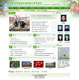 小苇芝港村官网建设